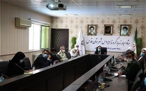 نشست ویدئو کنفرانسی معاون امنیتی و انتظامی استانداری تهران با فرمانداران شهرستان های استان
