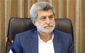 بررسی مشکلات آژانسها در استفاده از سامانه پیمایشی در اتاق اصناف ایران