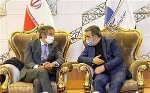 مدیرکل آژانس بینالمللی انرژی اتمی وارد کشور شد