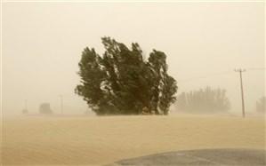 برای سومین روز متوالی باد با سرعت 100 کیلومتر بر ساعت زابل را درنوردید