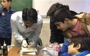 برگزاری طرح ایران مهارت در یکی از مناطق شهرستان های استان تهران