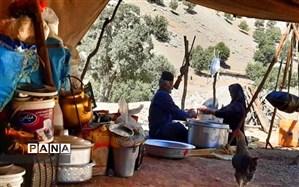 تولید سالانه 25 هزار تن گوشت قرمز توسط عشایر در فارس