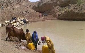 استاندار سیستان و بلوچستان آب خوردن مردم از هوتک را تکذیب کرد