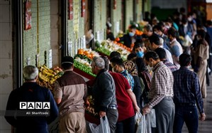 سبد مصرف میوه، سبزی و صیفیجات خانوارهای ایرانی کوچکـتر شده است