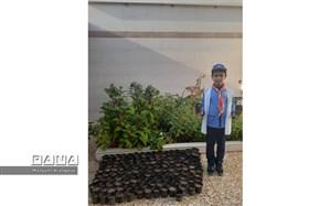 کاشت  130 اصله نهال بومی توسط دانش آموز پیشتاز مسجدسلیمان