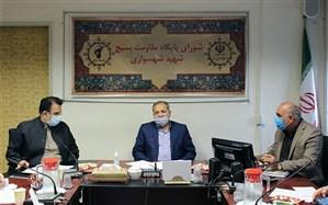 کاظمی خبر داد: ادامه پویش مجازی احلی من العسل تا روز اربعین حسینی