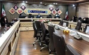 طرح افزایش مشارکت اجتماعی دختران در استان زنجان آغاز شد