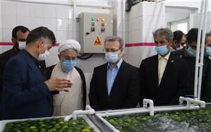 شرکت بستهبندی محصولات کشاورزی صادراتی در بندر نوشهر راهاندازی شد