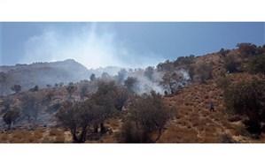 بی احتیاطی بَنِه چینها و نابودی 15 هکتار پوشش جنگلی نیریز در آتش