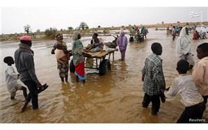 کمک یکصد هزار دلاری  آیسسکو برای حفاظت و مرمت آثارِ در معرضِ خطر سودان