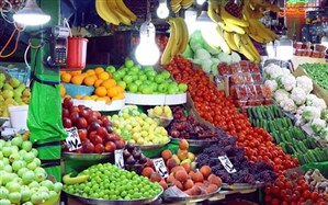 عامل گرانی میوه افزایش هزینه تولید و عرضه آن است