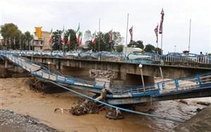 اگر مسئولین به رسالت خود عمل میکردند شاهد سیلاب تالش نبودیم