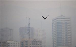 تداوم آلودگی هوای پایتخت تا فردا