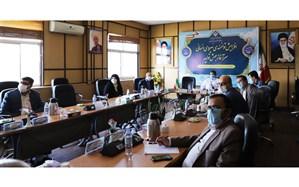 فولادوند:  9/5 درصد دانش آموزان تهرانی دارای اضافه وزن هستند