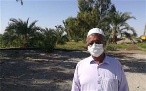 برداشت 500 تن محصول کشاورزی از یک زمین سنگلاخی در ایرانشهر