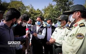 دستگیری 262 سارق و مالخر در پایتخت