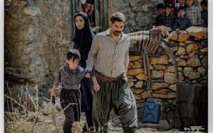 رقابت فیلمهای ایرانی با آمدن «درخت گردو»  برای حضور در اسکار داغ شد