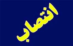 سرپرست دفتر هماهنگی امور اقتصادی استانداری بوشهر منصوب شد