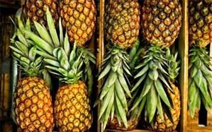 چرا آناناس در بازار نایاب شد؟