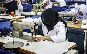 388طرح اشتغال وتوانمندسازی در استان زنجان به بهره برداری  رسید