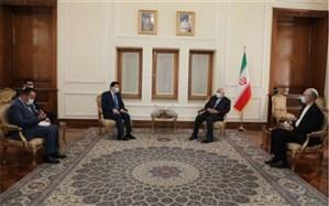 پایان ماموریت سفیران سوریه و ژاپن در تهران و دیدار با ظریف