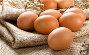 دانستنی های تخم مرغی در روز جهانی تخم مرغ