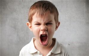 چه عواملی  باعث پرخاشگری کودکان میشود