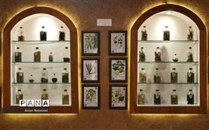 تمدید تعطیلی موزهها برای یک هفته دیگر