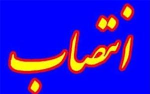 انتصابات جدید در فرمانداری بوشهر و انتصاب اولین سرپرست بخشداری چغادک