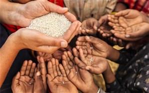 تامین غذای 9 میلیون نفر با جلوگیری از اتلاف محصولات کشاورزی