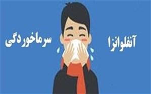 اگر گمان می کنید دچار آنفولانزا شده اید، بخوانید