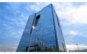 مسائل تخصصی پولی و ارزی به بانک مرکزی واگذار شود