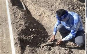 طرح مکانیزه آبیاری بلوار سردار سلیمانی شهر پیشوا