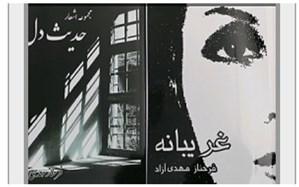 چاپ همزمان ۴ کتاب ادبی، رمان وشعر توسط معلم نویسنده منطقه ورامین