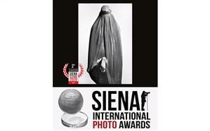 فتاح ذی نوری دومین عکاس برتر Siena 2020 شد