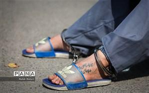 دادستانی تهران: قرارگاه مقابله با اراذل و اوباش تشکیل شد