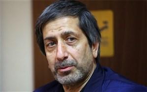 ظریفیان: اصلاحطلبان گزینههای محدودی برای انتخابات دارند