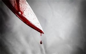قتل خواهر زن با ضربات چاقو در وسط خیابان
