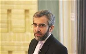 راهکار واقعی مبارزه با تروریسم، همکاری دولتهای منطقه است
