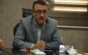 افزایش ۱۰ درصدی کشت زعفران در شهرستان رباط کریم