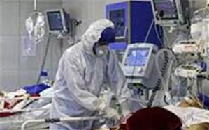 فوت 46 نفر در فارس بر اثر ابتلا به کروناویروس در 24 ساعت گذشته