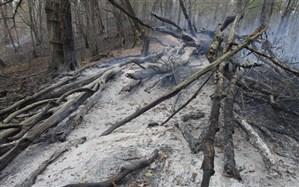 باران؛ نجات دهنده جنگلهای توسکستان پس از 8 روز سوختن