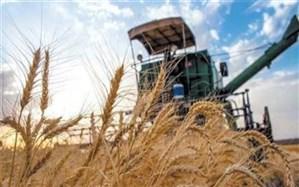 اجرای طرح «جهش تولید» در دیمزارهای ۶ استان کشور