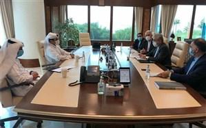 وزیر نیرو با وزیر مشاور در امور انرژی قطر دیدار کرد