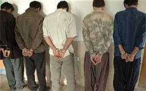 دستگیری 12 سارق در اجرای طرح پیشگیری از سرقت در ابهر