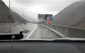 جاده چالوس و آزادراه تهران-شمال فردا یک طرفه است