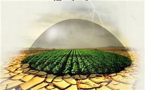 غرامت خسارت دیدگان بخش کشاورزی، هفتگی پرداخت می شود