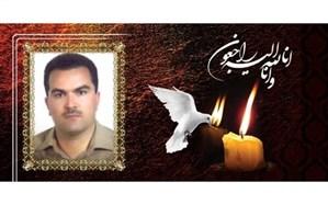پیام رئیس سازمان استعدادهای درخشان به مناسبت درگذشت «حسین امیرآبادی زاده»