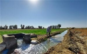 30 هزار هکتار از اراضی کشاورزی دشت سیستان آبگیری شد