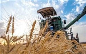 ٢٢٠٠ میلیارد ریال سرمایه در گردش به کشاورزان سیستان و بلوچستان پرداخت میشود